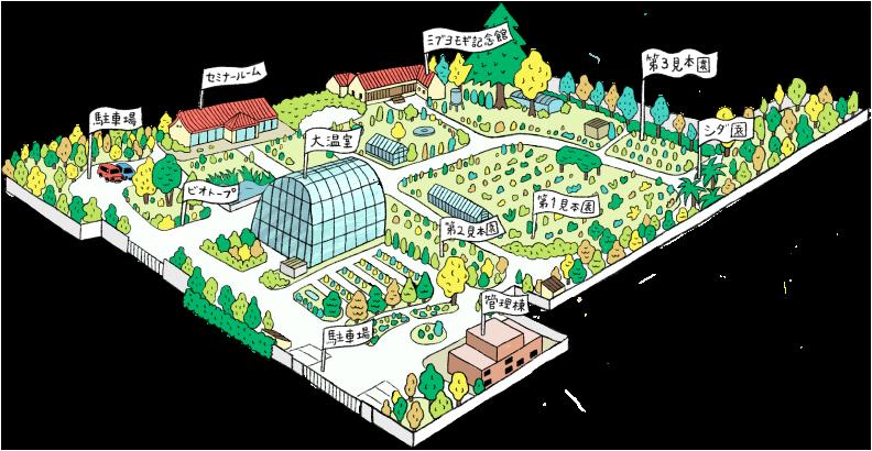 山科植物資料館 全体地図